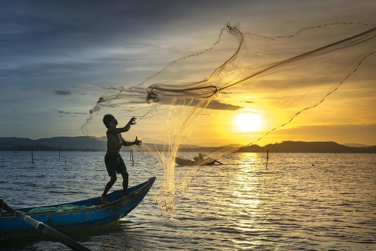 producción pesquera